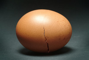 Cracked brown egg representing the need for individual psychotherapy